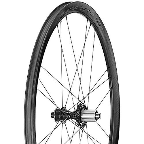 Campagnolo WTO 33 DB 2 wayfit Ruedas para Bicicleta, Negro