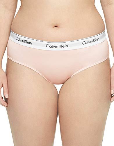 Calvin Klein Women's Standard Modern Cotton Bikini Panty, Nymph's Thigh, XS