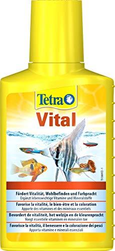 TetraVital Wasserpflege (zur Förderung von Vitalität, Wohlempfinden und Farbenpracht von Zierfischen, ergänzt lebenswichtige Vitamine und Nährstoffe), 100 ml Flasche