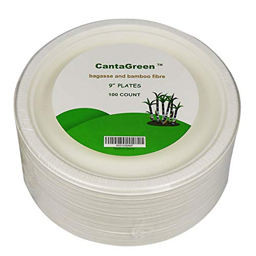 9 inch Compostable Plates, 100 Count Heavyduty Sugarcane/Bagasse and Bamboo Fibre Biodegradable Disposable Paper Plate