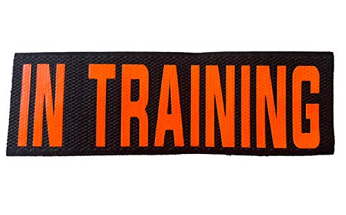 Service Dog in Training Patches - Hook Loop For Service Dog Vest Or Dog Collar Service Dog Emotional Support Canine in Training Service K9 In Training Therapy Dog in Training (Orange, Training)