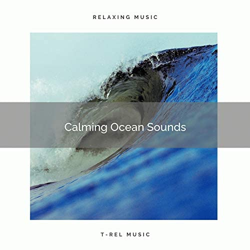 Ocean Sounds FX & Nature Songs Nature Music