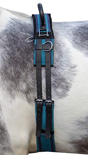HKM Cincha de lona, con doble agarre, color azul marino y azul