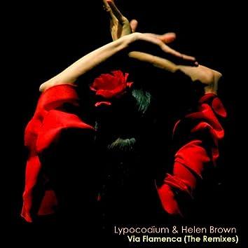 Via Flamenca (The Remixes)