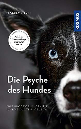 Die Psyche des Hundes: Wie Prozesse im Gehirn das Verhalten steuern