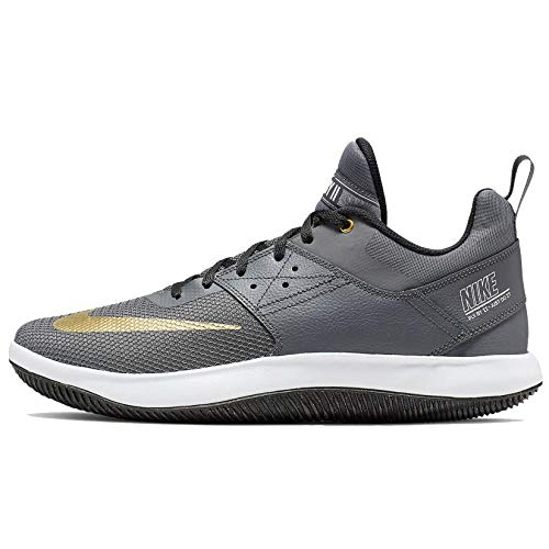 Nike Fly by Low II Basketball Shoe (Grey/Gold, Numeric_11)
