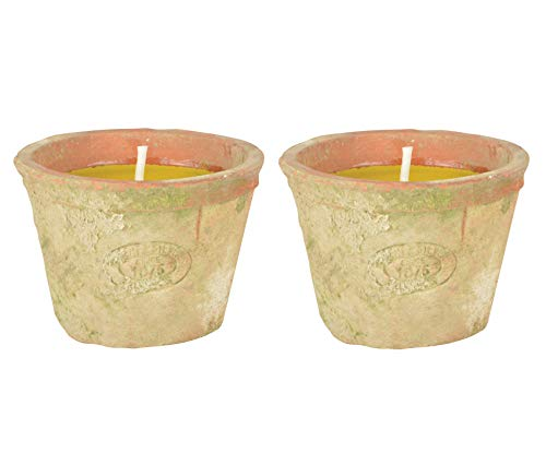 Classic Home Store Citronella Scent Candle in Terracotta Pot All Natural Animal Friendy Insect Mosquito Repellent (2 Pack)