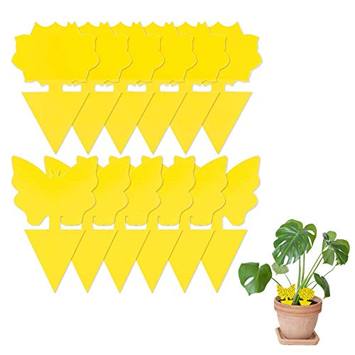 AWESMR Sticky Traps,Fruit Fly and Gnat Trap Yellow Sticky Bug Traps for Indoor/Outdoor Use - Insect Catcher for White Flies,Mosquitos,Fungus Gnats,Flying Insects - Disposable Glue Trappers (12Pcs)