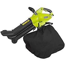 which is the best ryobi blower vac in the world