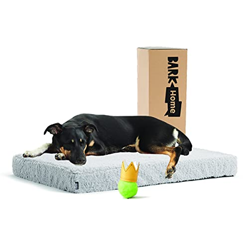Barkbox Soft Plush Memory Foam Platform Dog Bed, Mattress for Orthopedic Joint Relief, Machine Washable Cuddler with Removable Cover and Water-Resistant Lining, Includes Squeaker Toy