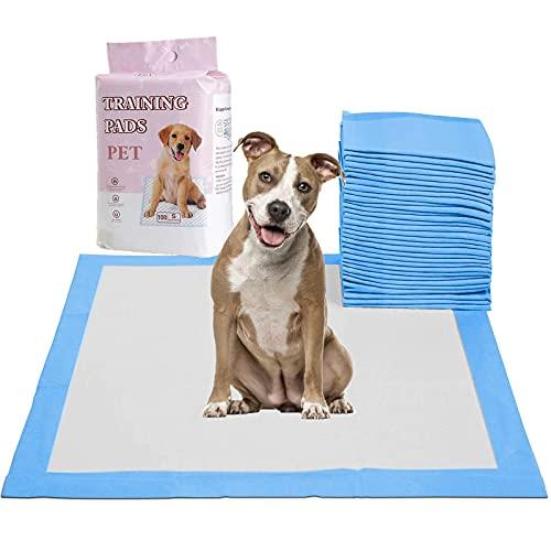 100 Pcs Empapadores Perros Alfombrilla higiénica de Entrenamiento para Perros, Ultraabsorbente Pañales Almohadillas (S (13 × 17,7 Pulgadas))