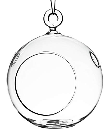 WGV Hanging Terrarium Globe, Width 4', Height 4.75', DIY Air Planter, Clear Glass Round Vase...