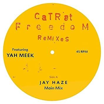 Freedom Remixes