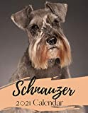 Schnauzer 2021 Calendar: Daily Weekly Monthly Yearly Calendar Diary Planner with Habit Tracker - Miniature Schnauzer Owner Lovers