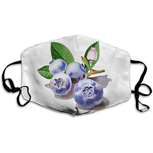 Stofvervuiling Masker Blueberry Fruit Patroon Kleurrijke Outdoor Mode Ontwerp Gezellige Wasbaar Herbruikbare Unisex Park Mond Masker Anti Stof afdrukken School Mooie Volwassen Comfortabele 11X