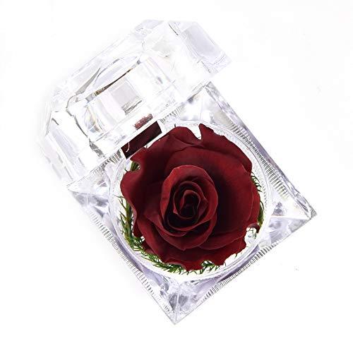 Luoistu Flor Rosa preservada a Mano, Rosas Nunca marchitas en Caja de Anillo de Cristal acrílico, Mujeres, niña, día de San Valentín, Navidad, Aniversario, cumpleaños, Boda (Vino Tinto)