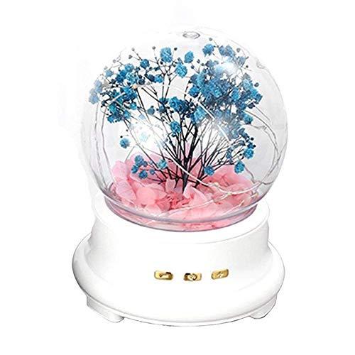 Jouets sonores Boîtes à musique Guirlande LED Light Music Box Haut-parleur Bluetooth lampe de nuit TF carte Cadeaux Romantique Musique Acrylique Musicbox Anniversaire Décor (Couleur: Rose, Taille: fre