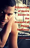 Silhouettes of Desire Dance in the Dimmest of Prison Darkness: An MM Prison Erom Novelette (At Night, Convicts Dream of Silhouetted Caresses Betwixt Their Weary Bodies Book 2)