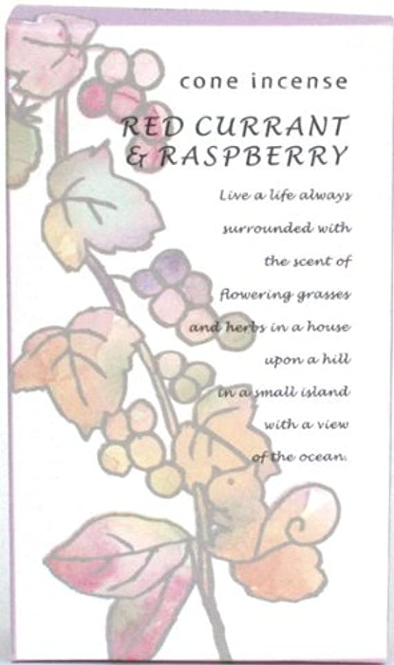 シンボルしてはいけない肥沃なサンハーブ お香コーンタイプ レッドカラント&ラズベリー  16粒(インセンス)