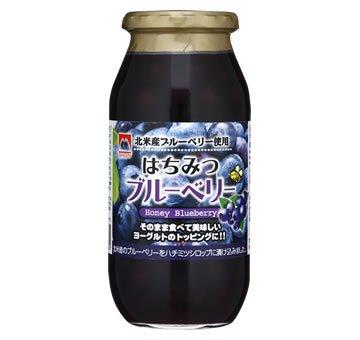 加藤美蜂園本舗 はちみつブルーベリー 650g瓶×6本入