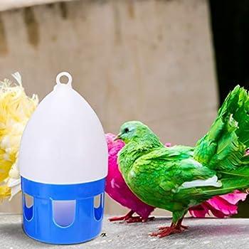 Balacoo Mangeoire pour Oiseaux 6L Abreuvoir pour Colibris Abreuvoirs pour Biberons pour Pigeons Perroquet Poulet
