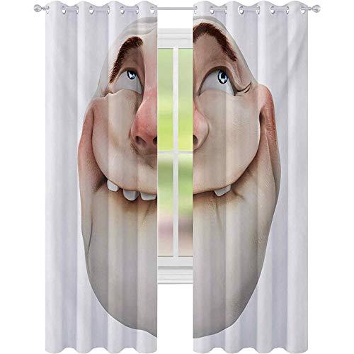 Cortinas opacas para dormitorio, cómics Fun Meme Face Online Social Media Gestures Mocking Head Artsy Picture Print, W52 x L72 Cortinas para habitación de bebé, color coral