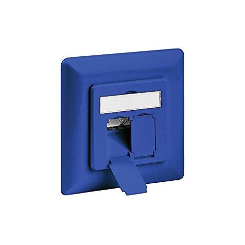 intellinet 771535 Cat6 inbouwdoos (2 poorten/FTP) blauw