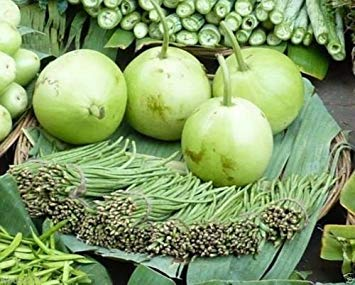 Fash Lady 25 samen Asian Gemüsesaatgut Calabash Runde Essbare Flasche Kürbis Gaguava Bohne, Opo, Lauki