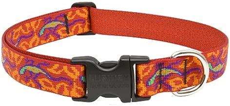 Best lizard dog collar Reviews
