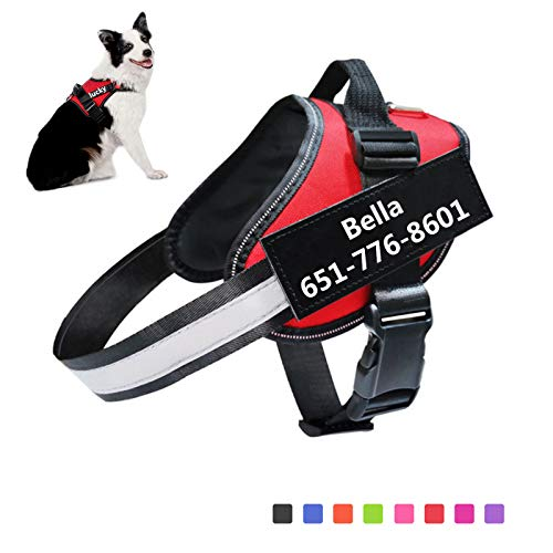 Small Medium Large Dog Harness|Custom Dog Harness for Dogs with Name|Personalized Dog Harness No-Pull Harness Comfort with Handle 3M Reflective|Dog Outdoor Walking Training (Red)