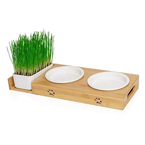 Pfotenolymp® Futterstation mit Katzengras für Katzen - Katzennapf / Futternapf aus Keramik - erhöhtes Napf-Set mit Katzengrasschale - Fressnapf hoch