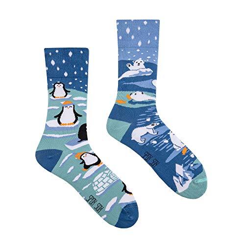 Spox Sox Casual Unisex - mehrfarbige, bunte Socken für Individualisten, Gr. 40-43, Winter