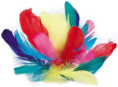 Plumes Coquille d'Oie - 12 gr de plumes de couleur