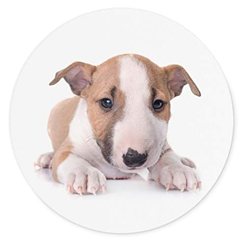 Merchandise for Fans Miniatur Bullterrier Welpe braun/weiß liegend, Mauspad rund aus Textil 20cm, Rutschfester Kautschukrücken, für alle Maustypen