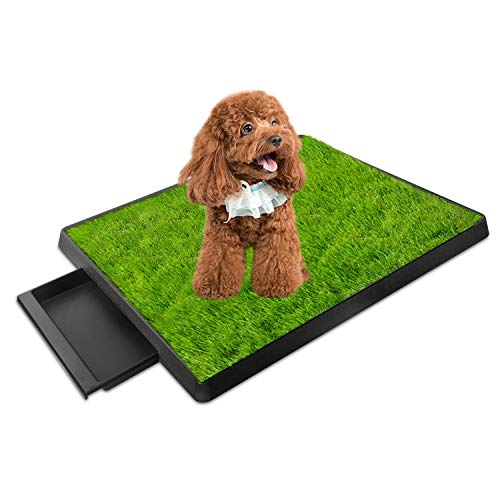 iMounTEK Grass Patch for Dogs, Artificial Grass for Dogs Potty with Tray, Fake Grass for Dogs Indoor and Outdoor Use, Puppy Training Pad, Best for Medium and Small Dog (Grass Patch with Tray)