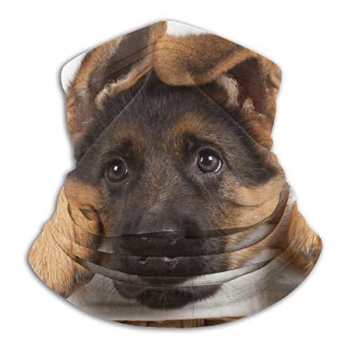 Bandanas Face Mask Neck Warmer Cover Head Wrap Sunscreen Face Cover Beanie Hat for Men Women, UV Protection, Running, Running - Cute German Shepherd Puppy Dog Balaclava