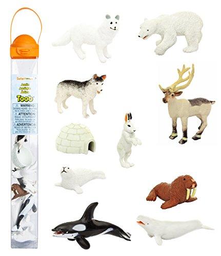 Safari Ltd Arctic TOOB With 10 Fun Figurines, Including A Harp Seal, Husky, Caribou, Arctic Rabbit, Killer Whale, Walrus, Arctic Fox, Beluga Whale, Igloo, And Polar Bear – For Ages 3 and Up