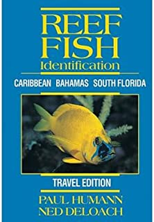 Reef Fish Identification - Travel Edition - Caribbean Bahamas South Florida