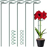 HiGift 5 Pack 18 inch Plant Support Stakes, Garden Single Stem Support Stake Amaryllis Plant Cage Support Rings with 10 pcs Plant Clips for Tomatoes Orchid Lily Peony Rose Flower Stem, 45 cm Long