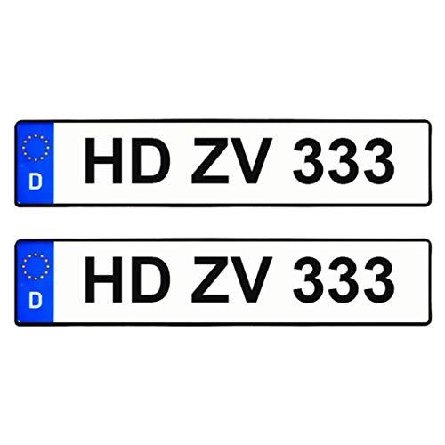 2X Standart Kennzeichen EU,Historisch,Elektro,Saison oder Wunschtext. 520mm-110mm