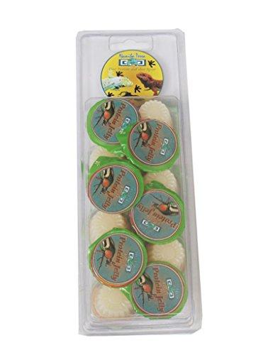 Namiba Terra 70112 Vorteilspack, 12 Stück Jungle Shop Beetle Protein Jelly für Insekten, 16 g pro Stück