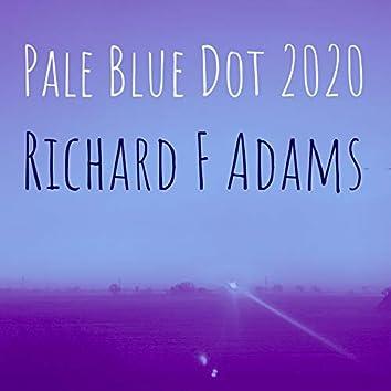 Pale Blue Dot 2020