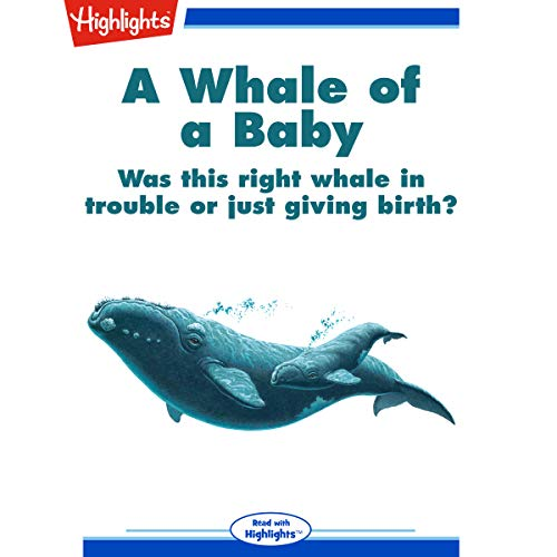 A Whale of a Baby copertina
