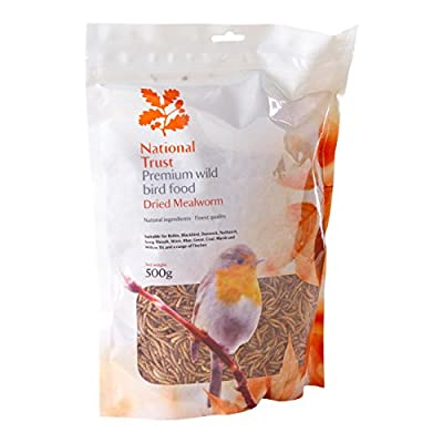 National Trust Wild Bird Food Premium Mealworms 500g from National Trust