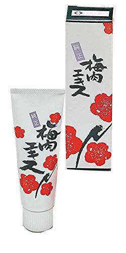 国産梅 梅肉エキス チューブタイプ 40g【メール便】
