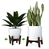 DearDesires Plant Stand Mid Century Modern Adjustable Indoor Plant Stand 8 9 10 11 12 inch Brown Plant Holder, fits Small and Large pots (Plant Pot NOT Included) Patent Pending