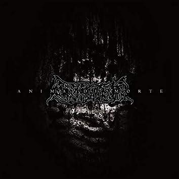 Anima Di Morte (2003 Demo)