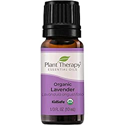 sleep problems in children: organic lavender essential oil plant therapy