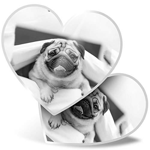 Impresionante 2 pegatinas de corazón de 15 cm – BW – Divertido perro carlino en la cama calcomanías divertidas para portátiles, tabletas, equipaje, reserva de chatarra, frigorífico, regalo genial #36904