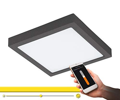 EGLO connect LED Außen-Deckenlampe Argolis-C, Smart Home Außenleuchte für Wand und Decke, Deckenleuchte aus Alu und Kunststoff, Farbe: Anthrazit, weiß, dimmbar, Weißtöne einstellbar, IP44